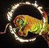 Цирки в Полтавке